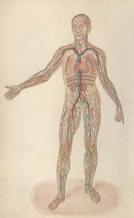 18th century remedies from the practical home physician; the human circulation system.